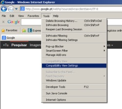 How to properly view the site in internet explorer 7 0 STCP